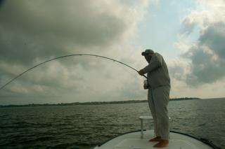 plenty of fish facebook application