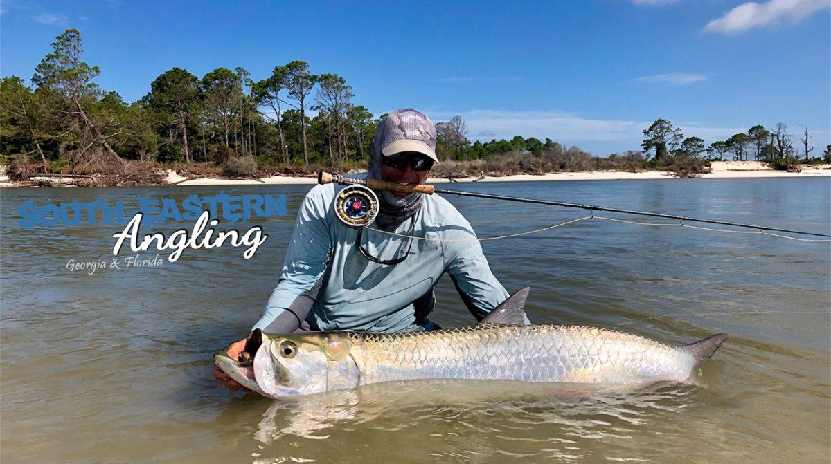 Tarponfishing