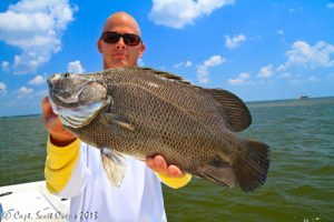 Tripletail charters