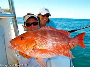 Offshore Deep Sea Fishing trips st. simons island