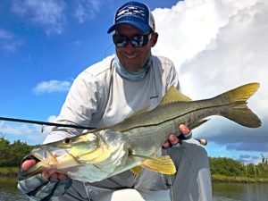 sight fishing snook