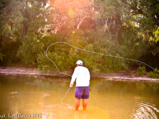 Fly Fishing St. Simons Island