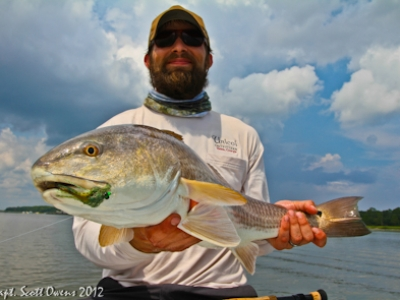 Fly Fishing redfish St Simons Island
