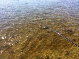 St. Simons Island Fishing Charters