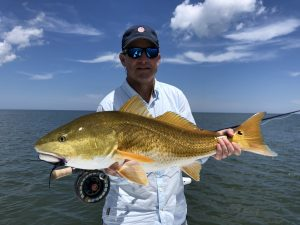 Jekyll island fishing report 2019