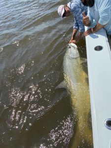 Saint Simons Island fishing report 2020 tarpon